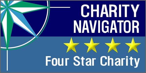 CharityNavigator4 StarLogo